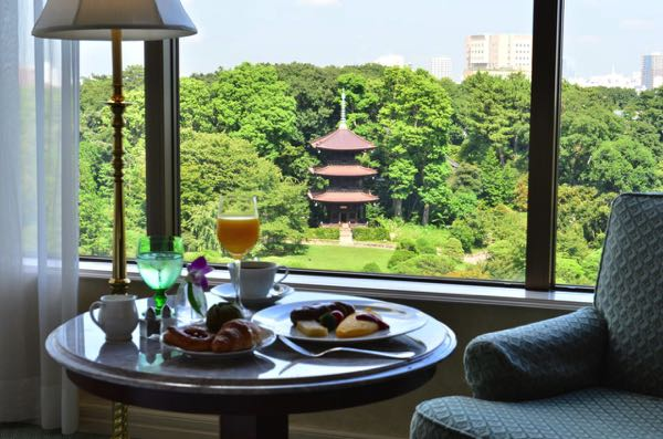 Výhled zHotel Chinzanso Tokyo