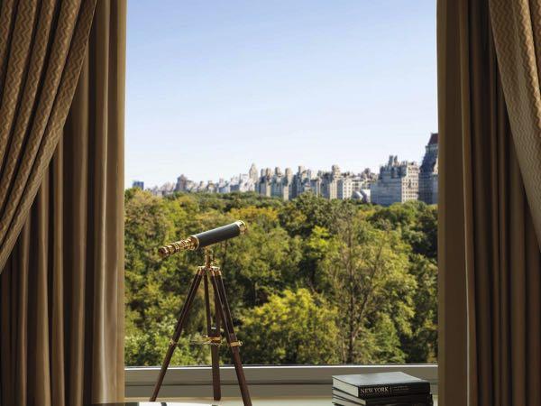 Výhled zThe Ritz-Carlton New York, Central Park